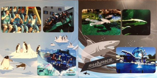 2013: Florida Spring Break Trip 2013: Sea World - Rides