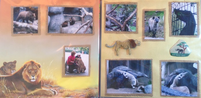 2008: San Diego Zoo