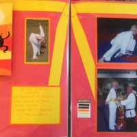 2008: Karate: Earning a yellow belt