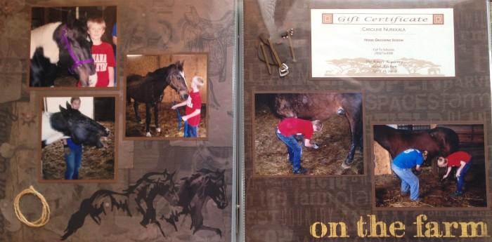 2009: Horse Grooming