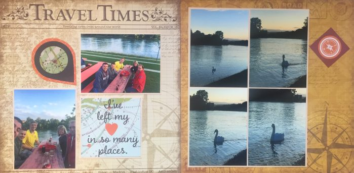 Europe Vacation 2015: Rhein and Geese