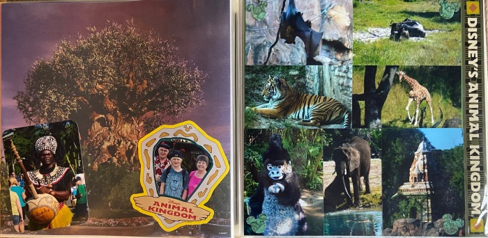 2010: Disney Animal Kingdom