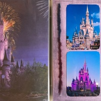 2010: Disney - Magic Kingdom