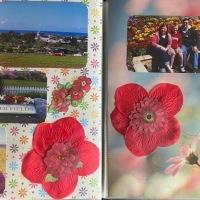 2011: Spring Break – The Flower Fields